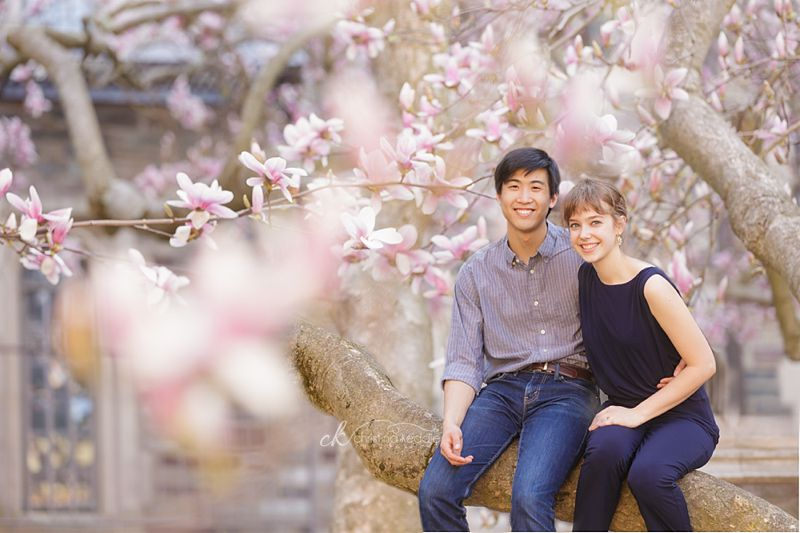 Springtime engagement portrait in blooming magnolia tree | Christina Keddie Photography | Princeton NJ engagement photographer